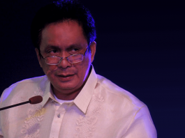 Gov. Roel Ragay Degamo Suspension majority